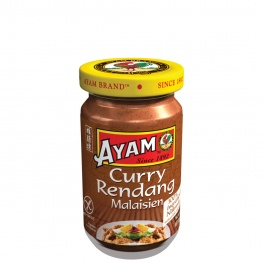 pate-de-curry-rendang-100g-1_465545538